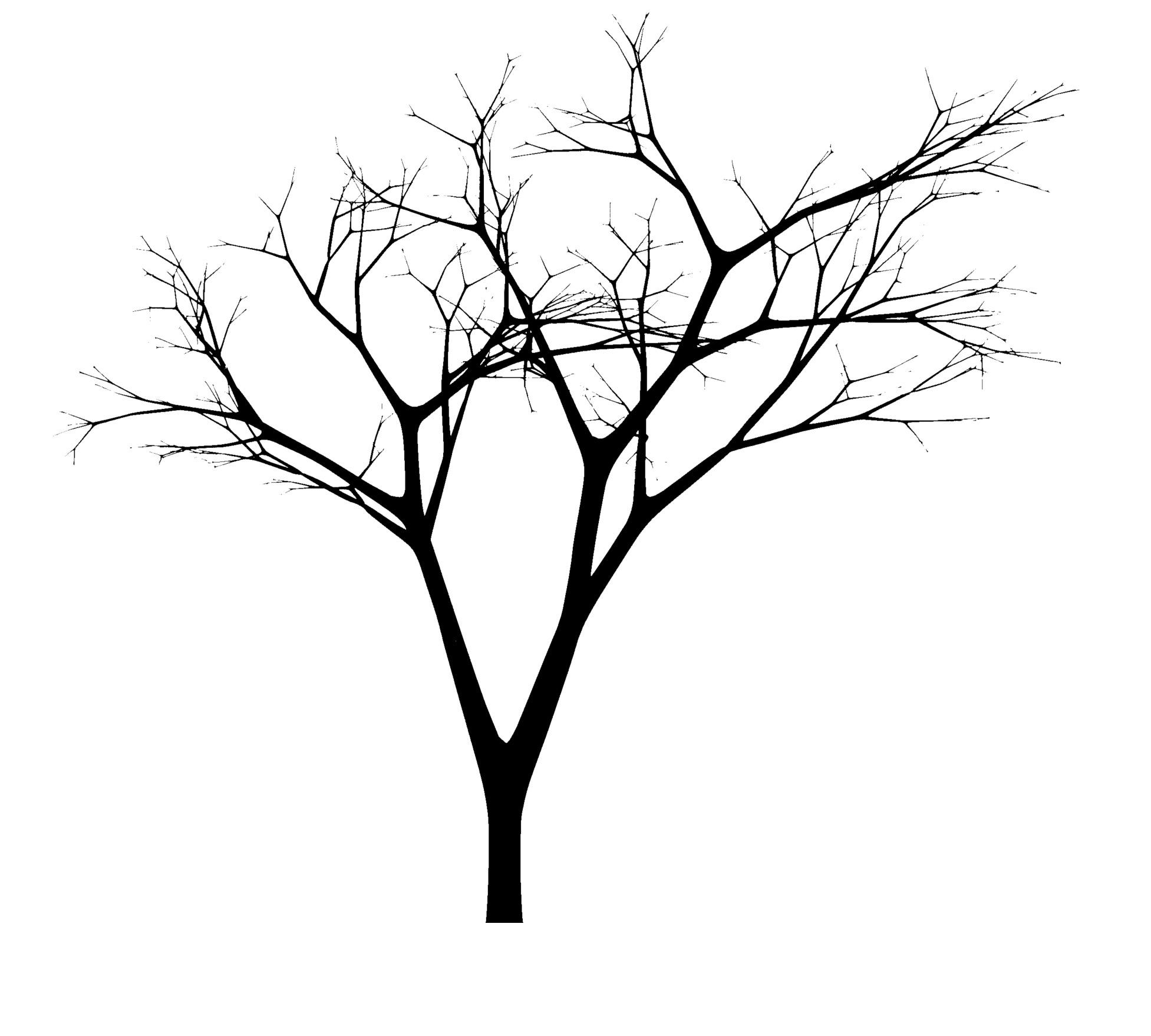 Arbol con ramas imagui - Ramas de arboles ...